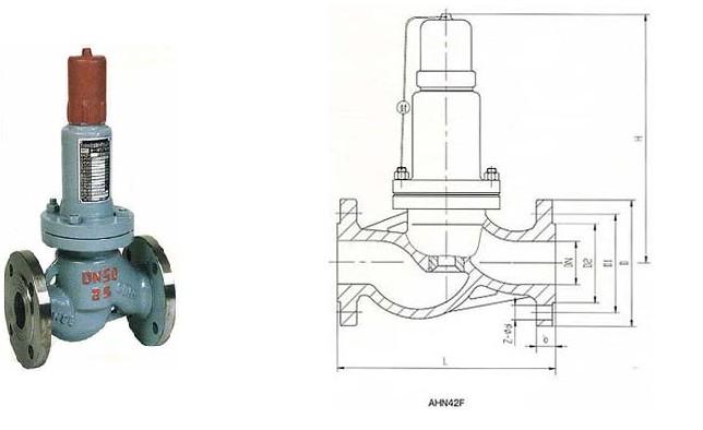【ahn42f型平行式安全回流阀】图片